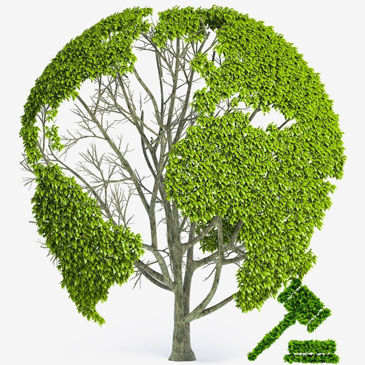 Consulenza Ambientale Professionale